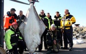 Lietuviai Norvegijoje pagavo 167,9 kg žuvį, Torsvåg havfiske nuotr.